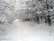 chemin neigeux Photos libres de droits