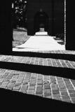 Chemin ombragé Images libres de droits