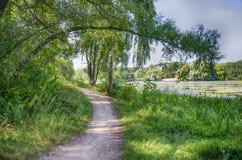 Chemin par le lac Image stock