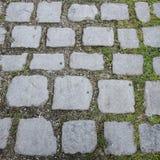Chemin pavé en cailloutis Image libre de droits