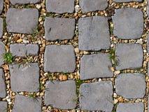 Chemin pavé en cailloutis Photo libre de droits