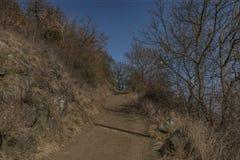 Chemin près de colline de Lovos en Bohême du nord Image stock