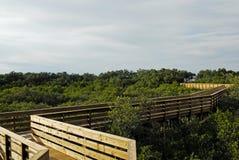 Chemin principal vert de plage au ciel Fx Photos stock