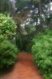 Chemin rêveur de jardin images libres de droits