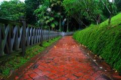 Chemin Redbrick à la forêt Image stock