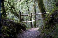 Chemin rural Images libres de droits