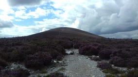 Chemin sur la montagne image libre de droits