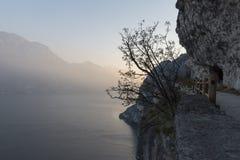 Chemin sur le lac garda Photo stock