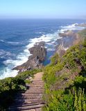 Chemin vers la mer Photographie stock