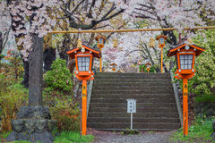 Chemin vers la pagoda de Chureito au printemps, Fujiyoshida Images stock