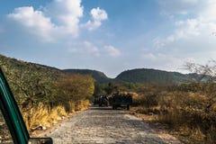 Chemin vers le parc national image libre de droits