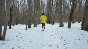 Cheminement du tir de l'homme masculin de sports courant sur la neige dans la for?t d'hiver banque de vidéos