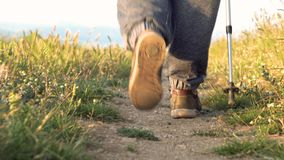 Cheminement du tir du randonneur supérieur méconnaissable avec le poteau de trekking marchant dans la campagne banque de vidéos
