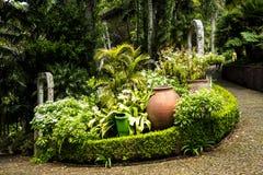 Chemins dans un beau jardin chez Monte au-dessus de Funchal Madère Images libres de droits