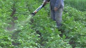 Chemisch bestrijdingsmiddel moderne nevel van Solanum tuberosum-aardappel tegen Leptinotarsa-de kever van Colorado van de decemli stock footage