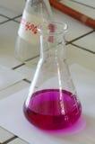 Chemisch de wetenschapsthema van de laboratoriumfles Royalty-vrije Stock Foto