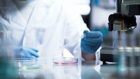 Chemisch laboratorium die nieuwe substantie voor productie van huishoudenchemische producten ontwikkelen royalty-vrije stock afbeelding