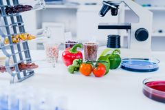 Chemisch Laboratorium van de Voedselvoorziening Het voedsel in laboratorium, DNA wijzigt zich GMO wijzigde genetisch voedsel in l stock fotografie