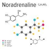 Chemische formule van een vectornoradrenalinemolecule vector illustratie