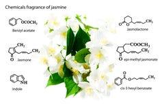 Chemische wapens, chemische structuren: sarin, tabun, soman, VX, lewisite, mosterdgas, traangas, chlorineJasmine Chemische Com royalty-vrije stock foto
