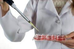 Chemisches Experiment Stockfotografie
