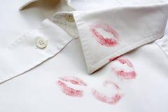Chemise de rouge à lievres Photographie stock