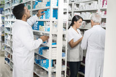 Chemist Arranging Stock While Colleagues Standing In Pharmacy Royalty Free Stock Image