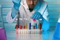 Chemist engineer working with tubes test in laboratory Stock Images