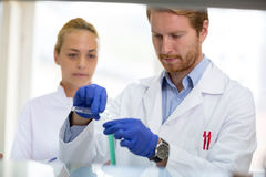 Chemist mixing liquids in lab Royalty Free Stock Photography