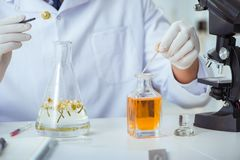The chemist mixing perfumes in the lab Royalty Free Stock Photography