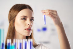 Chemist. Scientist working in the lab Royalty Free Stock Photography