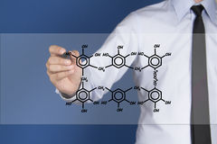 Chemist shows a molecular structure Royalty Free Stock Images