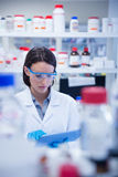 Chemist wearing safety glasses and using tablet pc Stock Photography