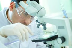 Chemist at work Royalty Free Stock Images