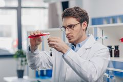 Chemist working in biological laboratory. Male chemist pouring reagent into flask with plant in biological laboratory Royalty Free Stock Photo