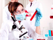 Chemist working in the laboratory Stock Photo