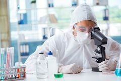 The chemist working in the laboratory with hazardous chemicals. Chemist working in the laboratory with hazardous chemicals Royalty Free Stock Images