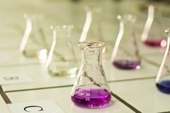 Chemistry beakers Stock Images