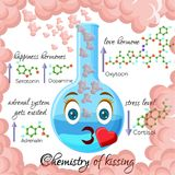 Chemistry of kissing cartoon style infographics with hormones that are released during kissing. Chemistry of kissing cartoon style infographics, showing Royalty Free Stock Image