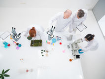 Chemistry lab experimental studies Stock Photos