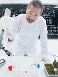 Chemistry laboratory experiment Royalty Free Stock Images