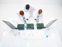 Chemistry laboratory experiment Royalty Free Stock Photography