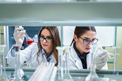 Young female researchers conducting laboratory test. Chemistry and medicine students working in a laboratory. Young female researchers doing lab tests royalty free stock photography
