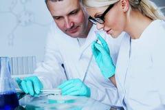 Chemistry Scientist Stock Photos