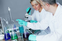 Chemistry Scientist Royalty Free Stock Photo