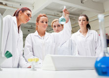 Chemistry students looking at a liquid Royalty Free Stock Photo