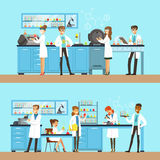 Chemists In The Chemical Research Laboratory Doing Experiments And Running Chemical Tests. Busy Scientists In Lab Coats In Institute Lab Set Of Two Cartoon Royalty Free Stock Images