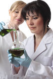 Chemists doing research Royalty Free Stock Photo