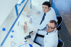 Chemists in eyeglasses and lab coats working together in chemical laboratory. High angle view of chemists in eyeglasses and lab coats working together in stock photos