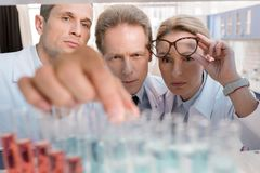 Chemists in laboratory Royalty Free Stock Image